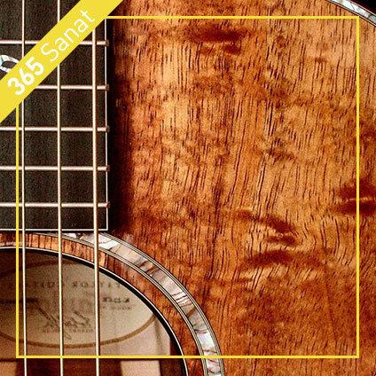 akustik-gitar-kursu-izmir-mavişehir
